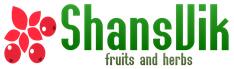 Logo ShansVik
